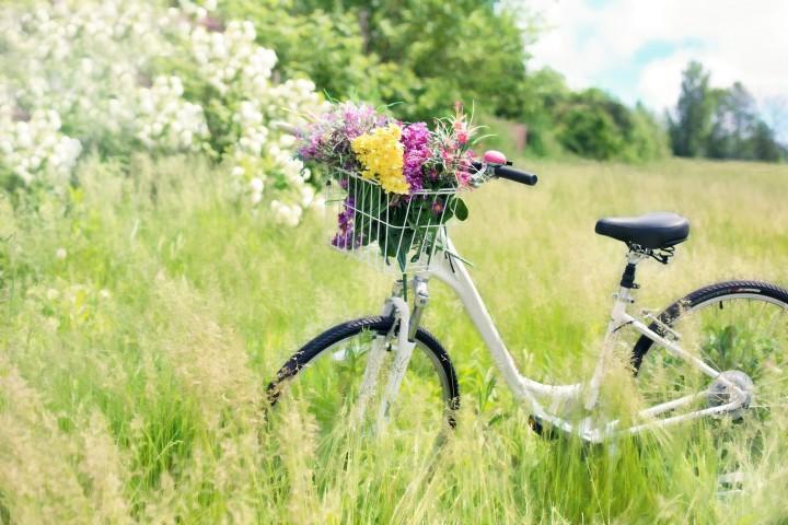 Nanotol-versiegeltes-Fahrrad